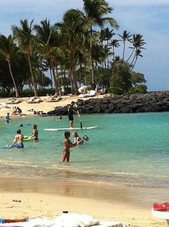 Fairmont Orchid, Hawaii: Praia particular