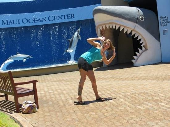 Maui Ocean Center: the shark is thhe entrance to the inside area.
