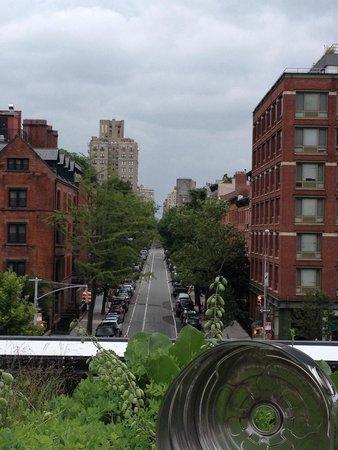 Scorci inaspettati dalla High Line