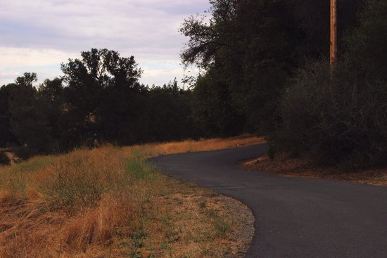 Yosemite Rose Bed & Breakfast: The pretty drive to the property