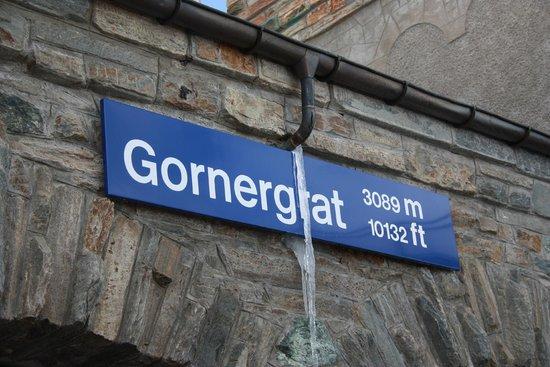 Gornergrat Bahn : At the top