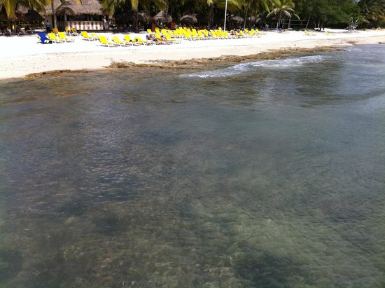 Iberostar Cozumel: Real pictures of the beach