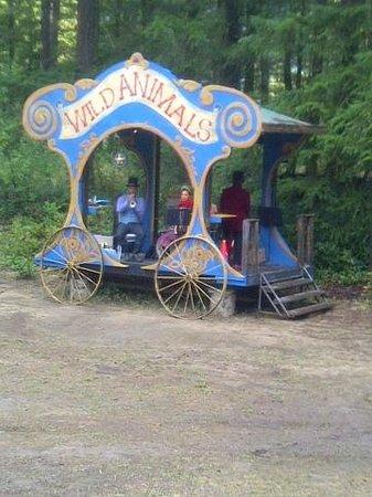 Caravan Farm Theatre : Show set