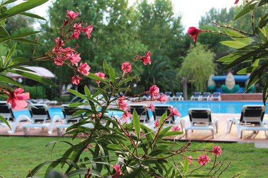 Ghiacci Vecchi: La piscina in mezzo al verde