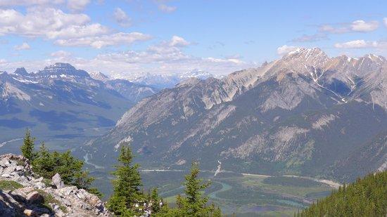 Banff Gondola: at the top