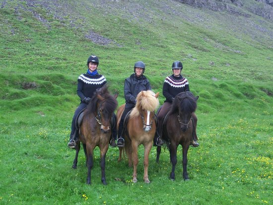 Riding Tours South Iceland : Saarland+Bayern on tour