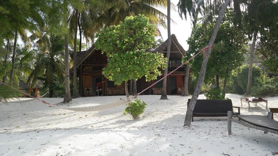 Evergreen Bungalows: View from beach onto our bungalow (room 12 and 14)