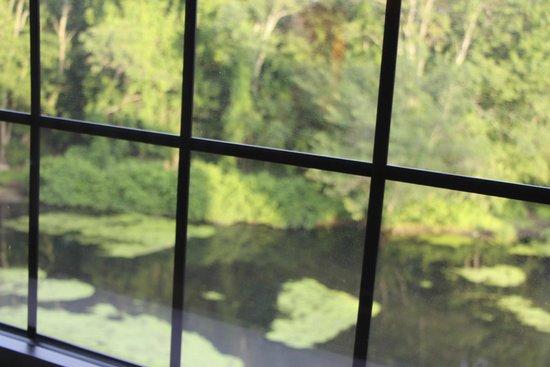 NYLO Providence/Warwick: Blick aus dem Zimmer