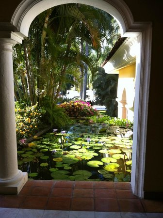 Casa Velas: Beautiful pond