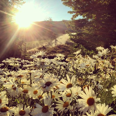 Mt. Hood Bed and Breakfast: Sunrise Walk