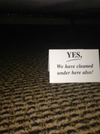 Stoney Creek Hotel & Conference Center - La Crosse : So they say....