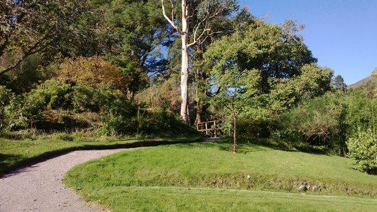 Crarae Garden Argyll: Crarae, 12 October 2014 1