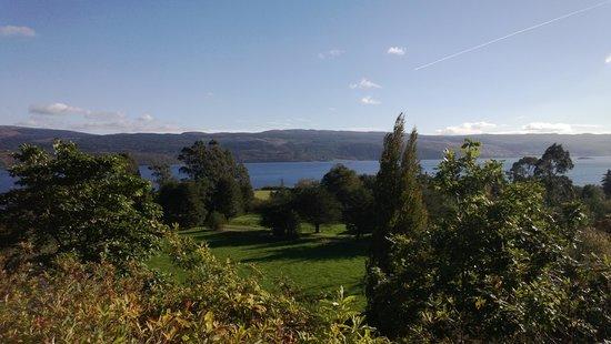 Crarae Garden Argyll: Crarae, 12 October 2014 4