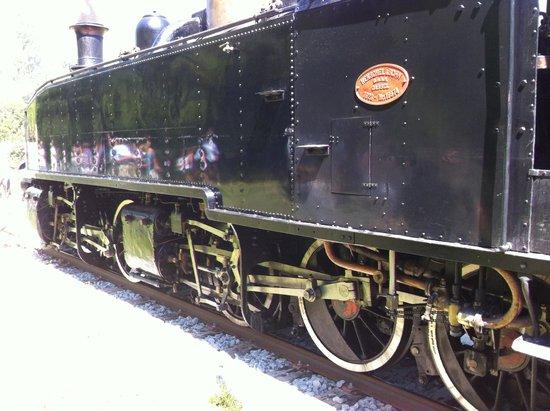 Train des Pignes : quelle beauté