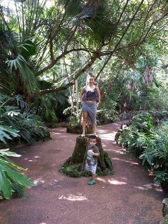 Pinecrest Gardens: Un pequeño paraíso escondido