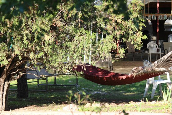 The Gardens At Mile High Ranch: Quiet, secluded!