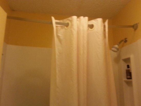 Travelodge Savannah Area/Richmond Hill: shower curtain