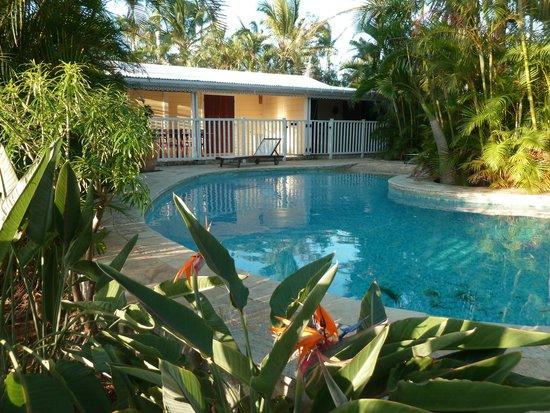 Baobab et Palmiers : piscine