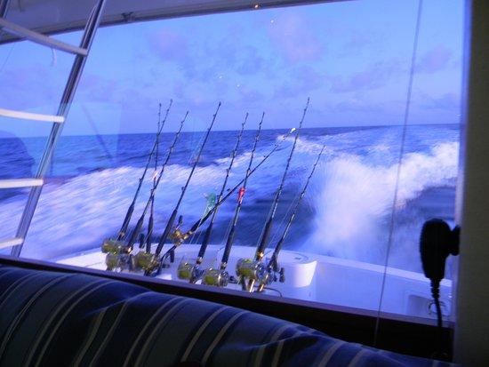 Charleston Sport Fishing: Boat