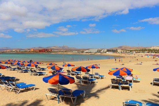 Barceló Fuerteventura Thalasso Spa: Beach
