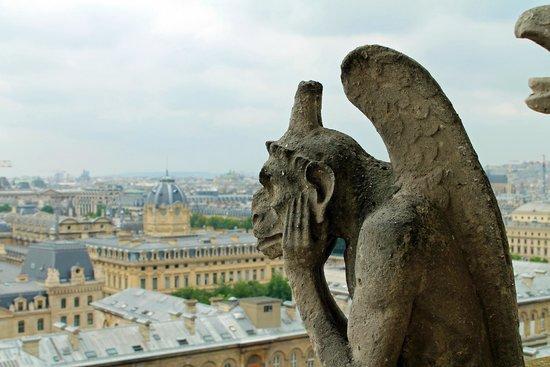 Tours de la Cathedrale Notre-Dame : Från tornen