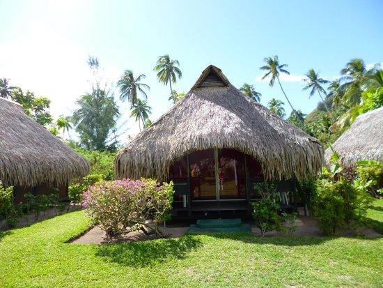 Hotel Hibiscus : le bungalow
