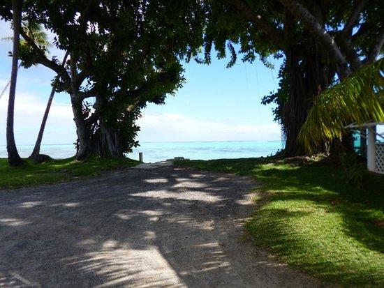 Hotel Hibiscus : vue du jardin sur la plage
