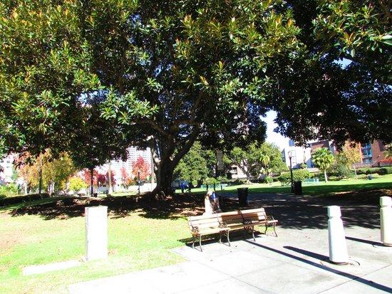 Pantoja Park
