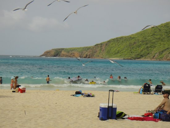 Playa Flamenco: the best beach