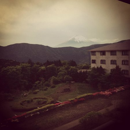 Hotel Green Plaza Hakone : Mt. Fuji view from our room