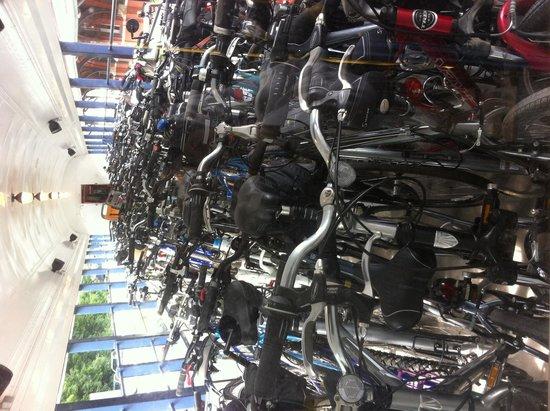 Pocono Biking: Train with bike on the way to White Haven drop off