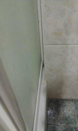 Villa dei Bosconi: doccia
