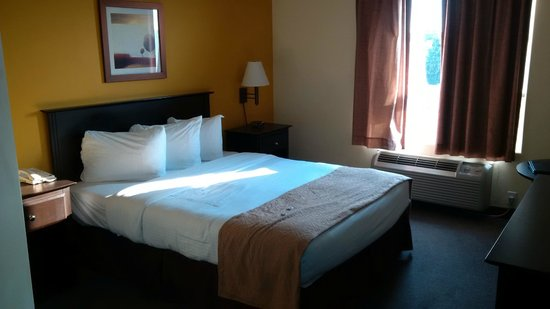 Super 8 Barrie: bunkbed room