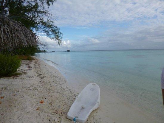 Pearl Havaiki: la plage