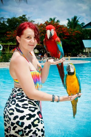 Dreams La Romana Resort & Spa : The Photographers come around with animals for EVERYBODY to have photos with.