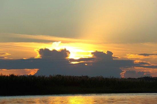 Kurupira Floating Cabin Amazonas : the view