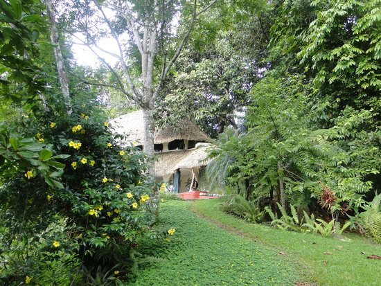 Las Nubes Natural Energy Resort: las nubes