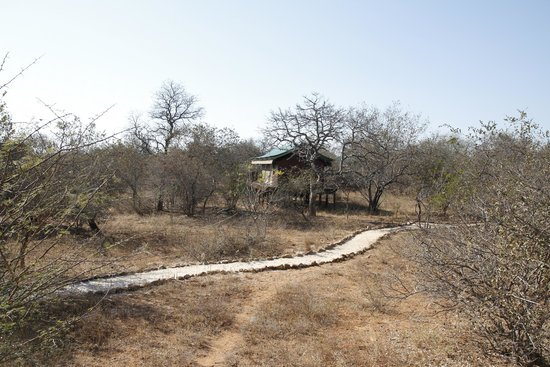 Mopaya Safari Lodge: Au coeur de la brousse