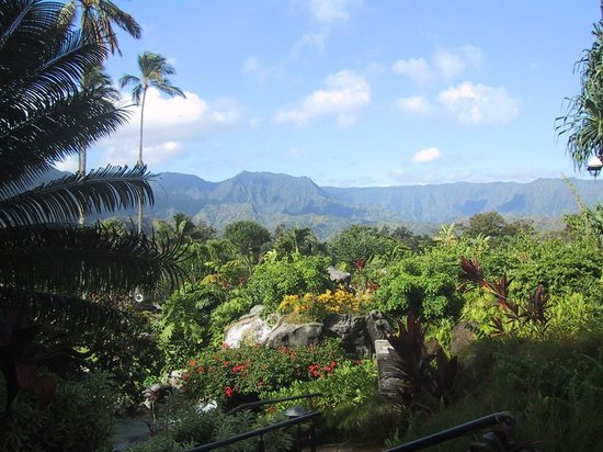 Hanalei Bay Resort : The Grounds