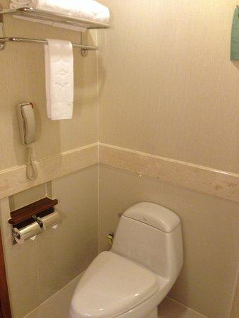 Shangri-La Hotel, Chiang Mai: Toilet