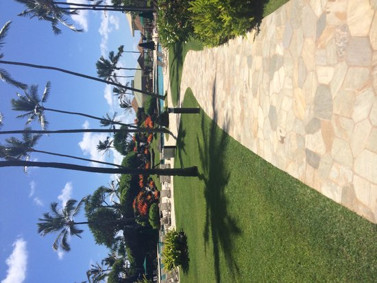 Kauai Beach Resort: The pool and grounds