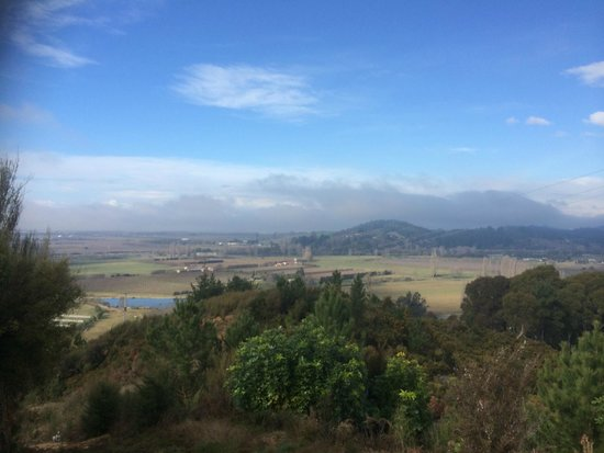 Awatea Tasman Bay: View 2