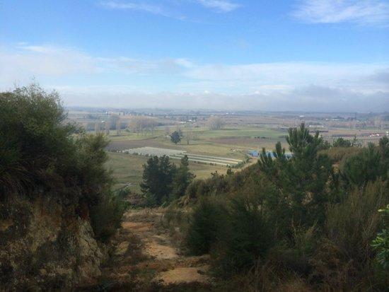 Awatea Tasman Bay: View