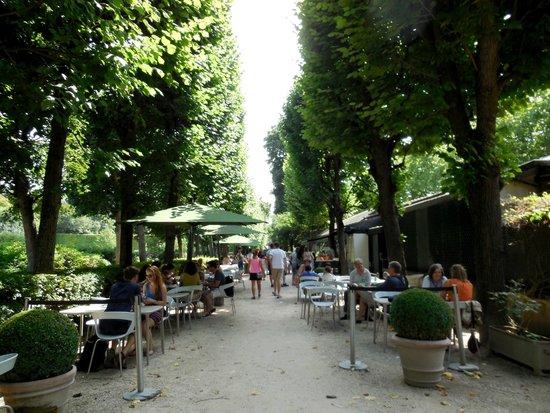 Musée Rodin : Cafe