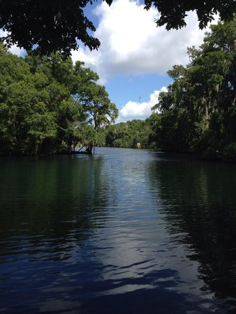 Chassahowitzka River Campground: On the Chass!