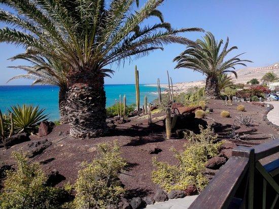 Hotel R2 Pajara Beach Hotel & Spa : hotel ,le long de la mer