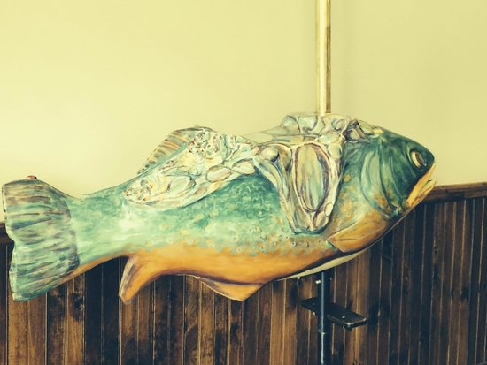 Adirondack Carousel: Fanciful fish to ride, also painted by Nancy Bouchard