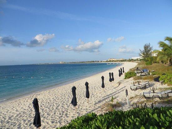 The Regent Grand : An amazing beach