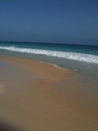 Hotel Riu Touareg : the beach 3