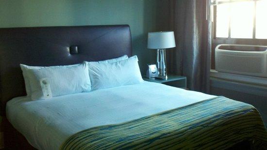 Galleria Park Hotel: Suite